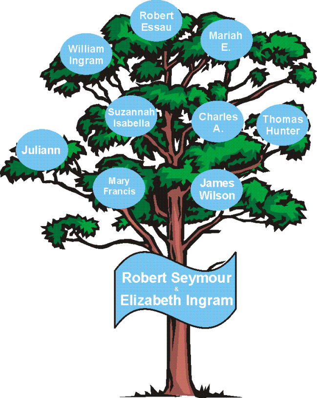 Robert Seymour and Elizabeth Ingram Family Tree